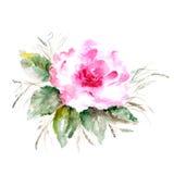 Fondo floreale di lerciume. Rosa. Immagine Stock