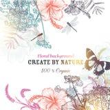Fondo floreale di vettore con l'ibisco inciso dei fiori, drago Fotografia Stock Libera da Diritti