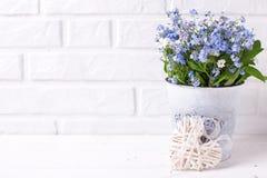 Fondo floreale - i nontiscordardime o il miosotis blu fiorisce dentro fotografia stock