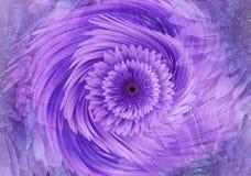 Fondo floreale luminoso porpora-rosa astratto La gerbera fiorisce il primo piano dei petali Cartolina d'auguri collage floreale Immagini Stock