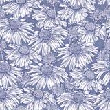 Fondo floreale senza cuciture con la pratolina, camomilla Immagine Stock Libera da Diritti
