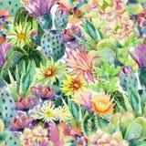 Fondo floreciente del cactus de la acuarela stock de ilustración