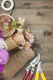 Fondo floristico degli strumenti Fiori rosa del garofano di Alstromeria su fondo di legno con gli strumenti floristici del giardi Fotografie Stock