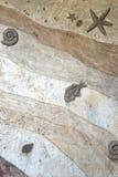 Fondo fossile di struttura della parete Fotografie Stock