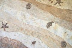 Fondo fossile di struttura della parete Fotografie Stock Libere da Diritti