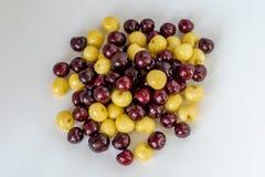 Fondo fresco de la cereza Detalle macro, cherryes aislados Fondo del alimento imagenes de archivo