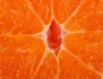 Fondo fresco de la mandarina Foto de archivo libre de regalías