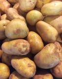 Fondo fresco de las patatas Imagen de archivo libre de regalías