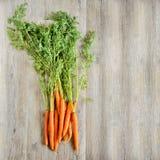 Fondo fresco de las zanahorias Fotos de archivo libres de regalías