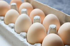 Fondo fresco de los huevos Fotografía de archivo libre de regalías