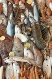 Fondo fresco de los mariscos Imagenes de archivo