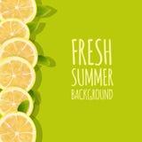 Fondo fresco del verano con las frutas del limón de la fruta cítrica Elemento del diseño Foto de archivo libre de regalías
