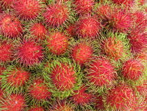 Fondo fresco della frutta del rambutan Fotografia Stock
