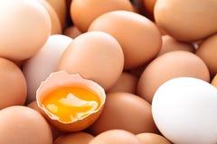 Fondo fresco delle uova Immagini Stock Libere da Diritti