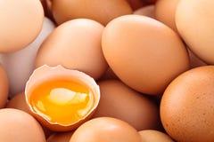 Fondo fresco delle uova Immagini Stock