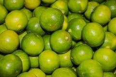 Fondo fresco e verde dei limoni Fotografia Stock Libera da Diritti