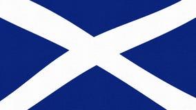 Fondo fresco variopinto allegro ballante d'ondeggiamento del ciclo della bandiera della Scozia di nuovo moto dinamico animato uni video d archivio