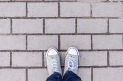 Fondo, gambe su una struttura del fondo di un muro di mattoni, struttura bianca di colore nel complesso Struttura orizzontale Fotografia Stock Libera da Diritti