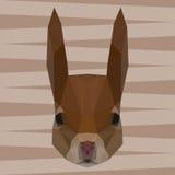 Fondo geometrico astratto poligonale dello scoiattolo del triangolo per noi Fotografia Stock