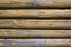 Fondo giallo del ceppo Fotografia Stock