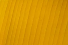 Fondo giallo della foglia della banana Immagini Stock Libere da Diritti