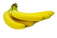 Fondo giallo tropicale della natura isolato frutta di Banane Immagine Stock Libera da Diritti