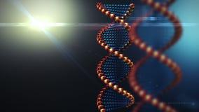 Fondo giratorio de la estructura de la DNA ilustración del vector