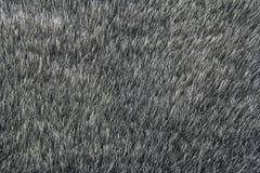Fondo grigio della pelliccia artificiale Immagini Stock Libere da Diritti
