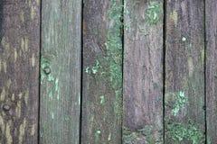 Fondo grigio e verde verticale della plancia Immagine Stock Libera da Diritti