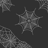Fondo gris con el web de araña Fotos de archivo