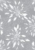 Fondo gris con los crisantemos blancos Imagen de archivo
