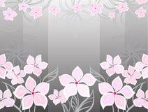 Fondo gris de la flor Fotografía de archivo libre de regalías