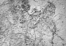 Fondo gris del color del cemento de la pared del cemento Fotografía de archivo libre de regalías