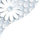 Fondo gris elegante con la manzanilla del blanco 3d libre illustration