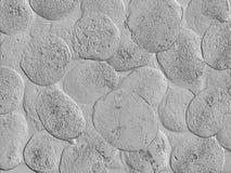 FONDO GRIS GRABADO EN RELIEVE Fotografía de archivo libre de regalías