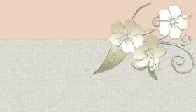 Fondo hawaiano de la flor Fotos de archivo libres de regalías