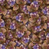 Fondo hecho de las mariposas de diversas flores Fotos de archivo libres de regalías