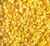 Fondo hecho de maíz Fondo del alimento fotos de archivo libres de regalías