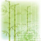 Fondo hermoso con el bambú Foto de archivo libre de regalías