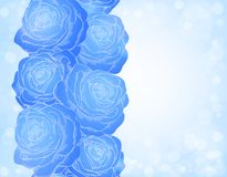 Fondo hermoso con las rosas azules y el SP brillante Foto de archivo libre de regalías