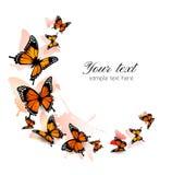 Fondo hermoso de la mariposa Fotografía de archivo libre de regalías