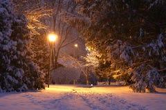 Fondo hermoso de la noche del invierno Imagen de archivo libre de regalías