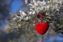 Fondo hermoso de la tarjeta del día de San Valentín feliz Imágenes de archivo libres de regalías
