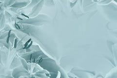 Fondo hermoso de la turquesa floral Composición de la flor de los lirios de las flores Imagen de archivo libre de regalías