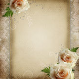 Fondo hermoso de la vendimia Imagen de archivo