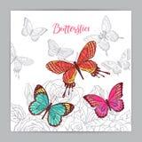 Fondo hermoso de mariposas coloridas Imágenes de archivo libres de regalías