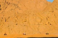 Fondo hermoso del día de fiesta del viaje de la gente de Egipto del safari de la motocicleta Imagen de archivo libre de regalías