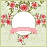 Fondo hermoso del vintage para la boda con las rosas ilustración del vector