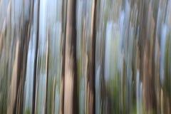 Fondo hermoso en diseño conceptual soñador, usando la técnica de la fotografía conocida como toma panorámica Foto de archivo libre de regalías
