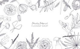 Fondo horizontal con las flores para hacer publicidad, tienda floral, salón Composición monocromática dibujada mano con el lugar  Fotos de archivo
